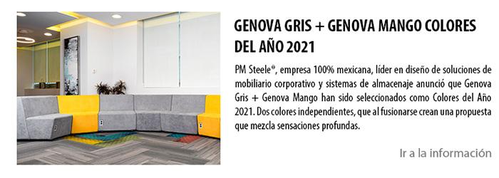 GENOVA GRIS + GENOVA MANGO COLORES DEL AÑO 2021